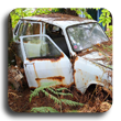 Learn about the abandoned vehicle abatement program.