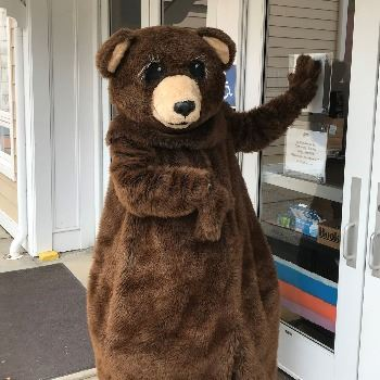 Person in a bear suit